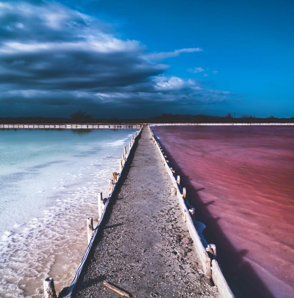 las-salinas-salt-marsh best places to visit in Puerto Rico